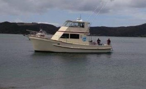 Commercial Boats For Sale in New Zealand